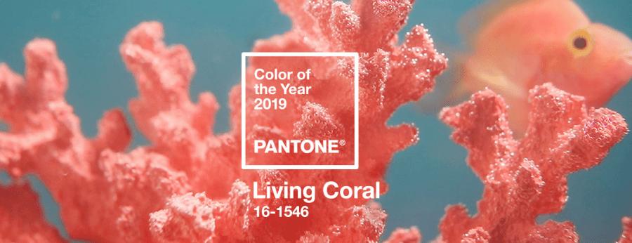 Kolor roku 2019 - Living Coral 16-1546